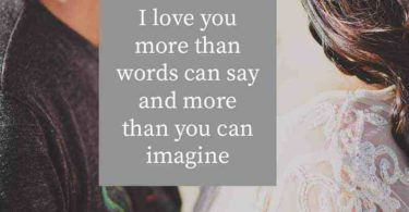 I Love You More Than Quotes Image
