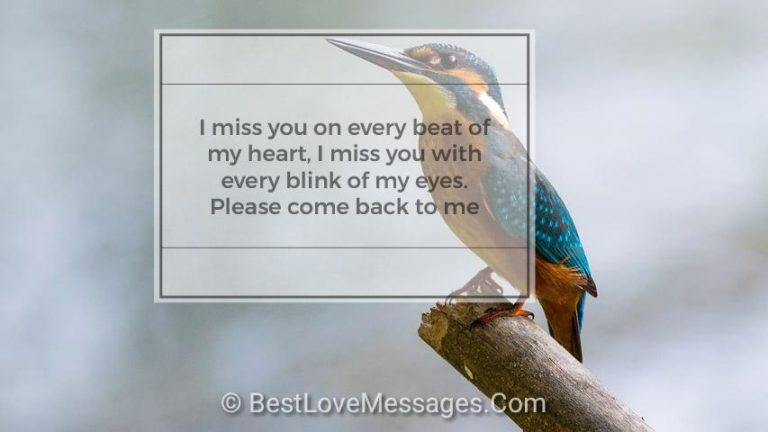I Miss You Love Messages