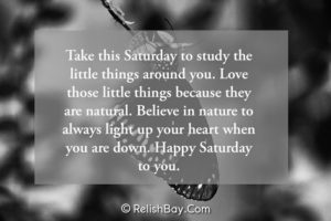 Happy Saturday Messages and Quotes
