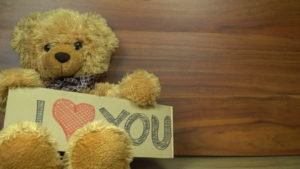Teddy Bear with a Message